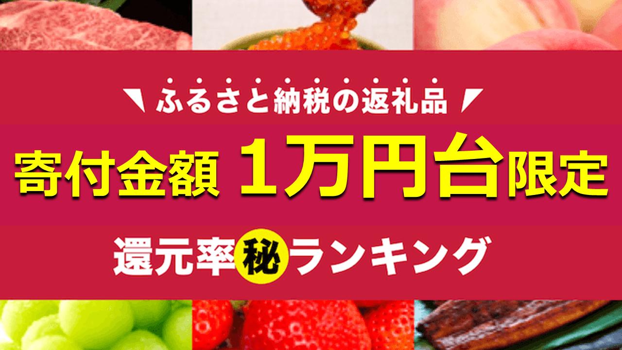 寄附金額1万円台限定!ふるさと納税 還元率ランキングBEST15 ...